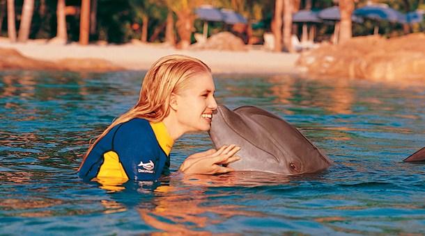nadando-con-delfines-en-disney-world