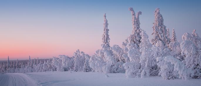Viajes Laponia