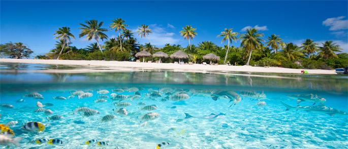 Viajar a Fiji