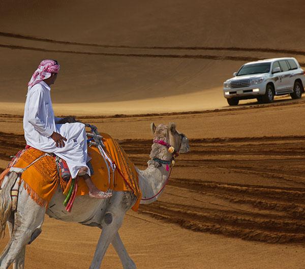 Viajar a Emiratos Arabes