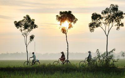¿Por qué visitar Indonesia?