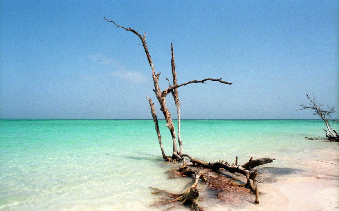 Descubre el paraíso cubano de Cayo Largo